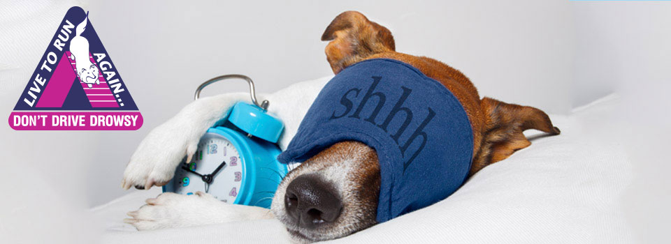 Being alert and awake behind the wheel is the only safe option! <b>Discover the power of sleep!</b>